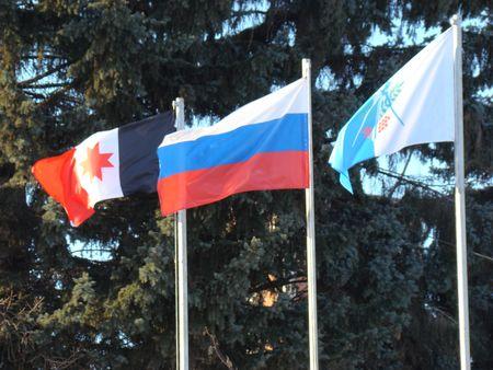 использование государственного флага