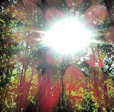 солнце-450.jpg